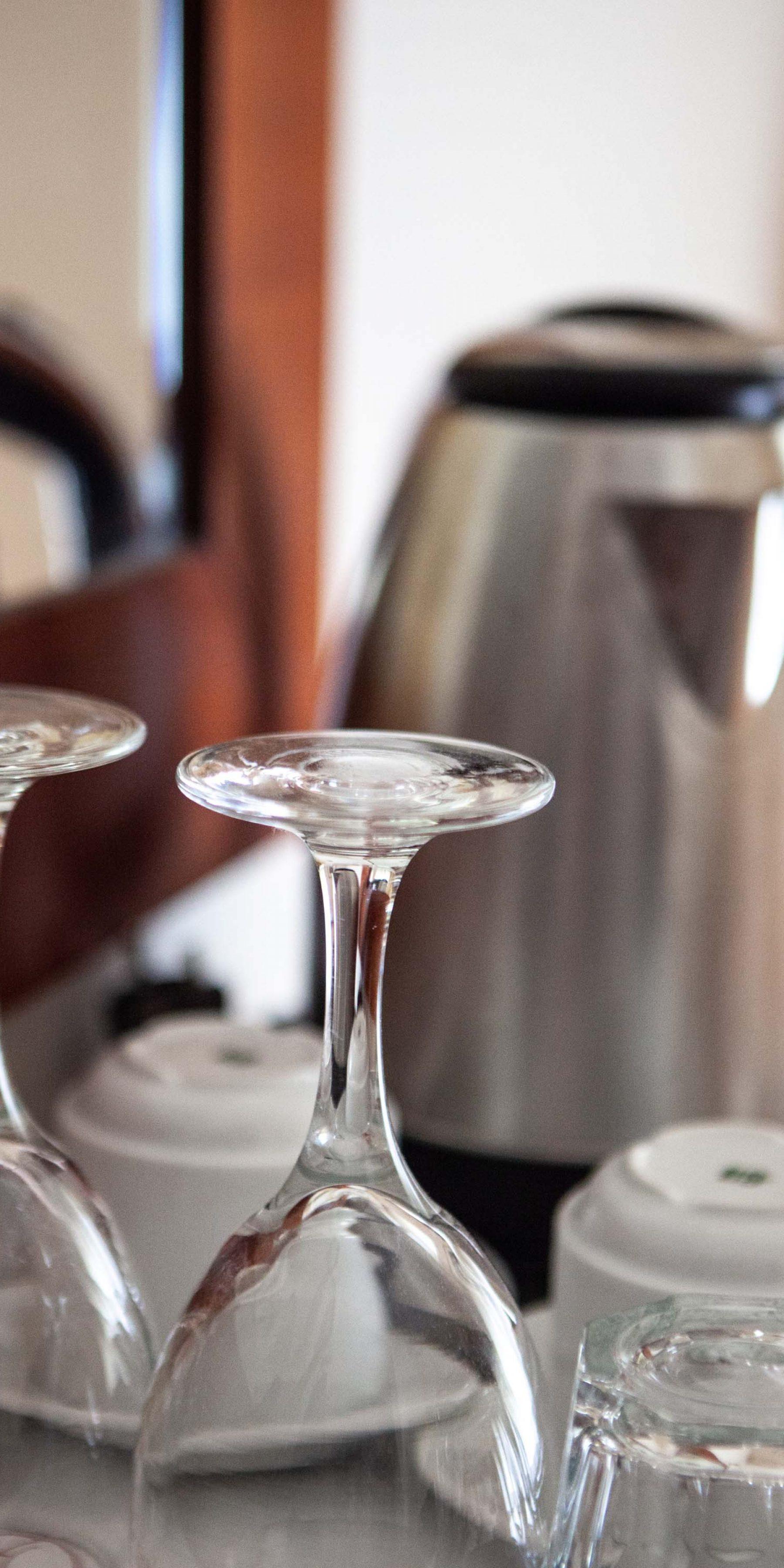 hotel elena_cups_ copy